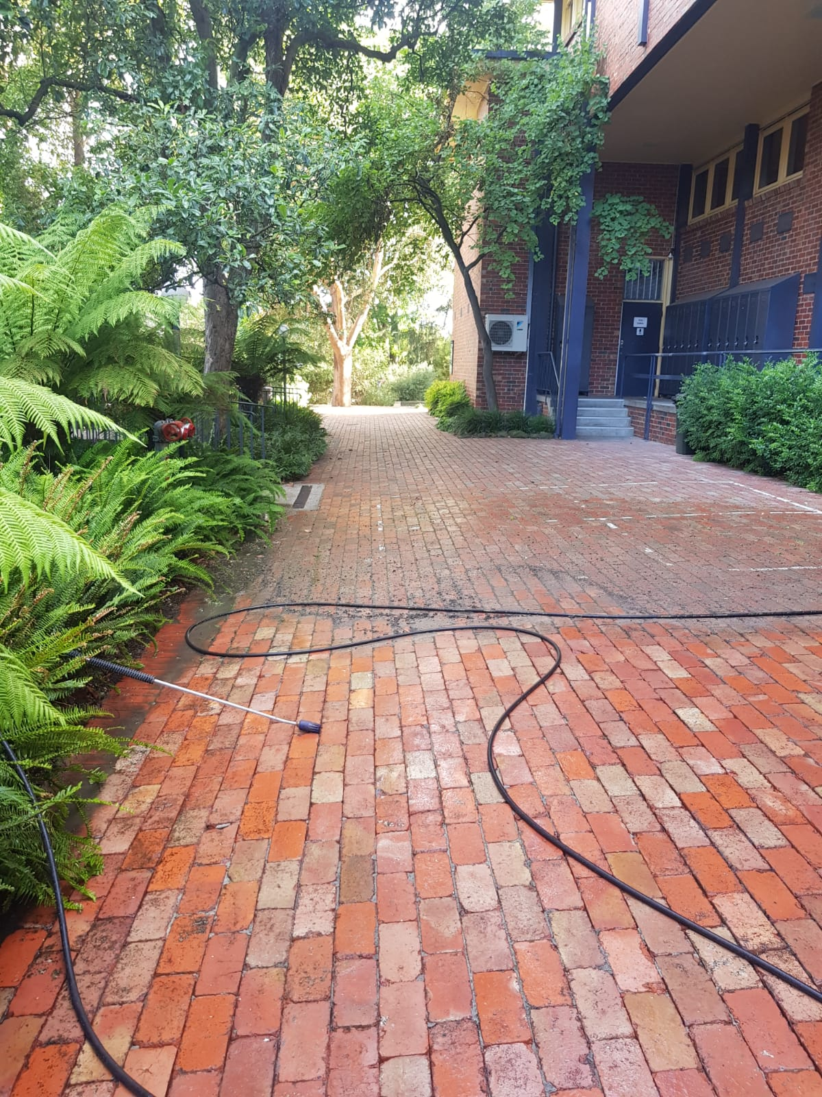Fintona girls school pressure wash cleaning (2)